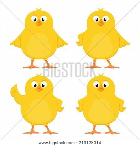 Funny yellow chickens isolated on white background, illustration.