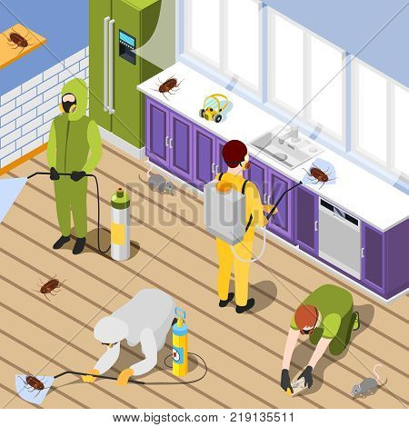Pest control isometric background with exterminators in protective suits spraying pesticide in home interior vector illustration