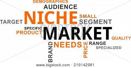 A word cloud of niche market related items