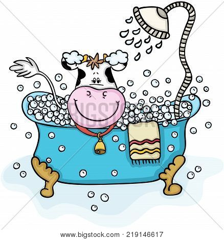 Scalable vectorial representing a cute cow taking a bubble bath, illustration isolated on white background.