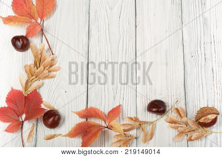 Autumn still life cup of coffee on wooden table. nitted sweater with autumn leaves, spokes, crochet and coffee mug. Autumn moody style background. Top view