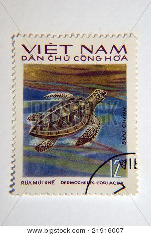 Vietnamese Turtle Postage Stamp
