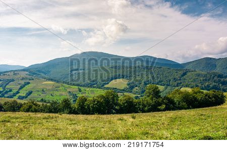agricultural fields on grassy hills in mountains. beautiful rural landscape of Carpathians