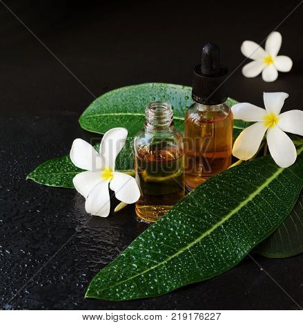 Small Glass Jars With Oil And Frangipani Plumeria Patchouli Flowers For Spa Treatments Black Backgro