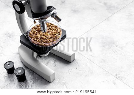 Food analysis. Wheat under the microscope on grey background.