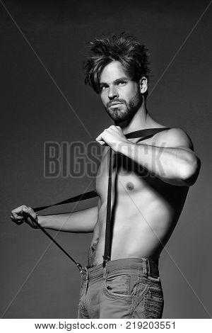 Handsome Muscular Sexy Man