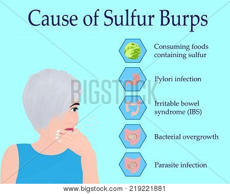Causes of Sulfur Burps vector illustration infographics poster