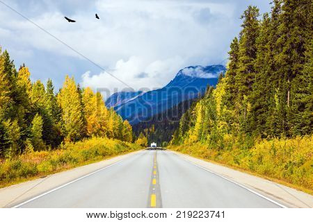 The concept of active and automobile tourism. Migratory birds fly in flocks. The magnificent Highway 93