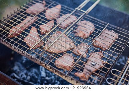 Barbecue in the forest.shashlik at nature. Process of cooking meat on barbecue, closeup. Barbecue with meat in metal grate, closed-up in forest with grass