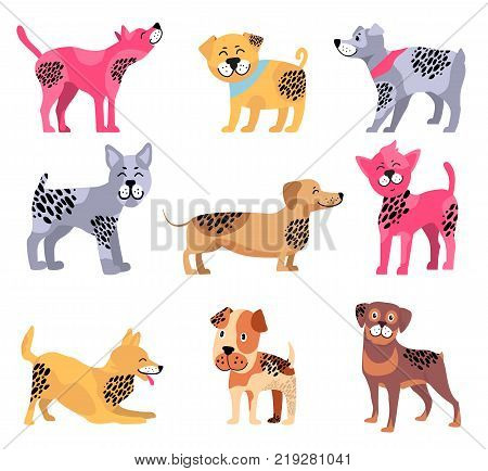 Dogs of different breeds icons isolated on white background. Vector illustration with dachshund surrounded by rottweiler, beagle and playing akita