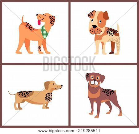 Weimaraner with neckerchief, boxer puppy, adorable dachshund and friendly rottweiler isolated cartoon vector illustrations on white background.