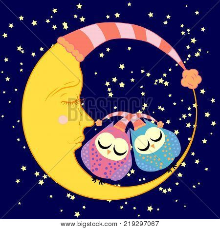 cute cartoon sleeping owls in circles with closed eyes sits on a drowsy crescent moon among the stars