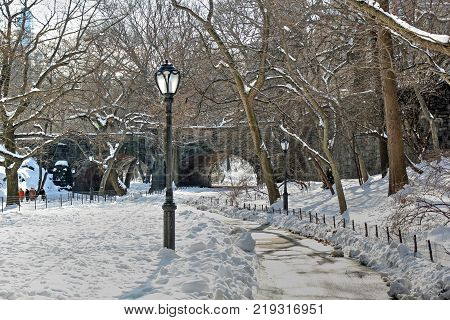 Lightpost in winter Central Park with pathway and snow