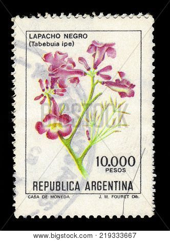 ARGENTINA - CIRCA 1984: a stamp printed in the Argentina shows Lapacho negro is a large deciduous tree, native to South America, series flowers, circa 1984