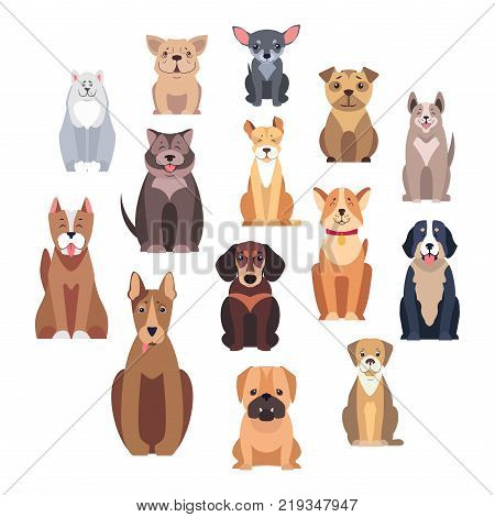 Cartoon dog breeds isolated on white background. Small and big dogs vector illustration. Adorable, funny and loyal humans friends. Hunting, protection and decorative species from all over world.