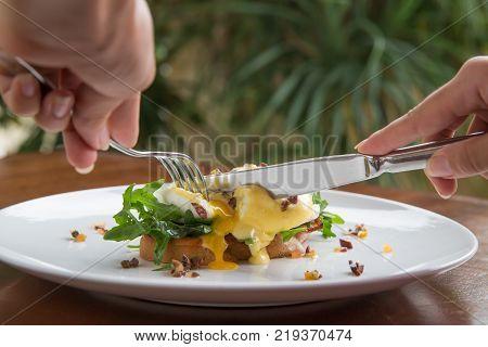 Egg benedict. Croc monsieur. Classic breakfast concept