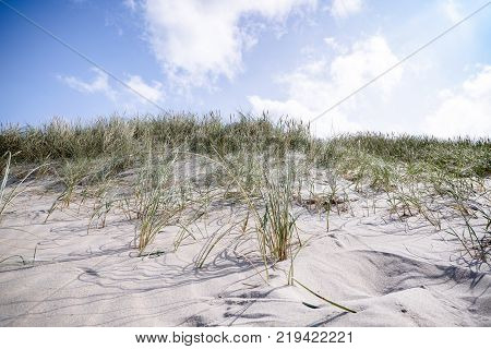 Ruin Of A German Bunker Burried In The Sand