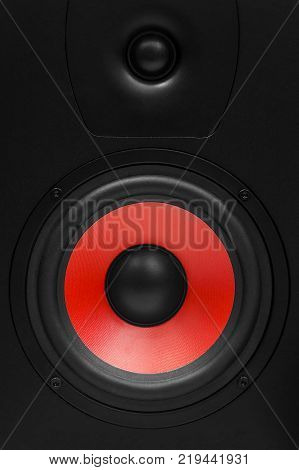 Stereo sound system isolated on white background. Stereo speakers in wooden case.
