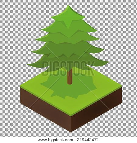 Big isometric Spruce tree illustration to create a design landscape and parks on transparent background. Flat 3d isometric stock vector illustration. -stock vector