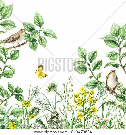 Watercolor painting. Hand drawn illustration. Green meadow with songbird and insect. Aquarelle collage made with forest birds sitting on branches flying yellow butterfly and wildflowers.
