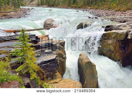 Waterfall Along The Icefields Parkway In The Canadian Rockies Between Banff And Jasper
