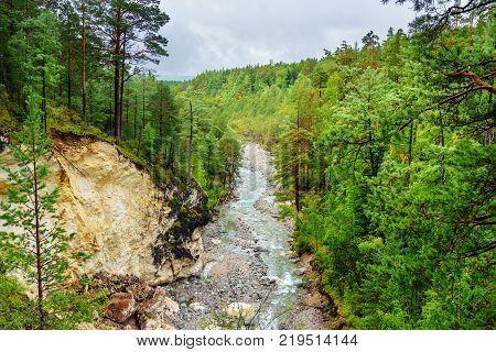 View On Kyngyrga River. Arshan. Russia