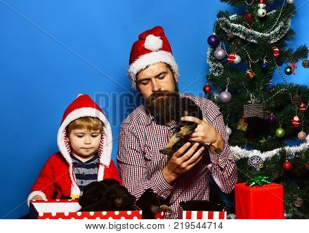 New Year Of Dog. Man And Boy In Santa Hats