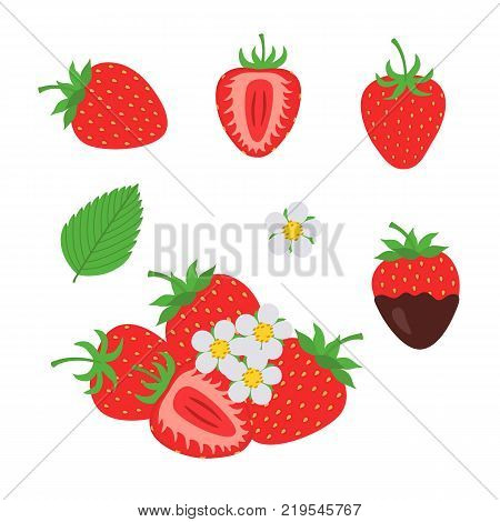 red berry strawberry and a half of strawberry. Set flower, petal, strawberry. Chocolate covered strawberries. Isolated on white background, fruit