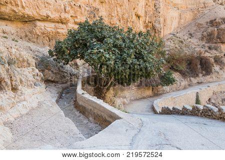 The path leading to the monastery of St. George Hosevit (Mar Jaris) in Wadi Kelt near Mitzpe Yeriho in Israel