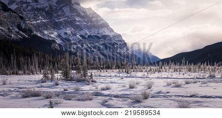 Amazing landscapes in the snowy winter along the Icefields Parkway in Alberta, Canada
