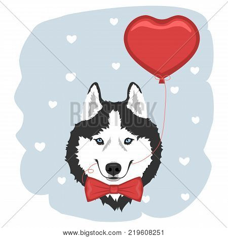 Dog with red bow tie and heart balloon. Black and white Siberian husky with blue eyes. Valentine's day greeting card. Vector illustration
