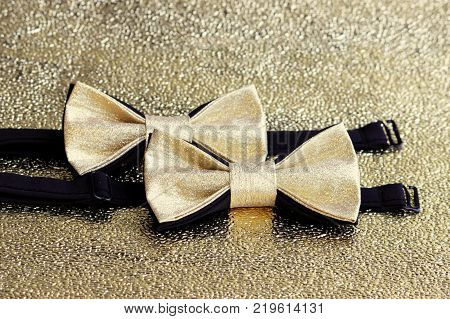 Two festive golden with a black bow tie on a gold background