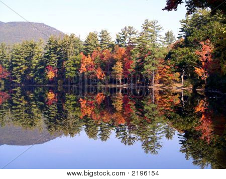 Maine Autumn On Lake