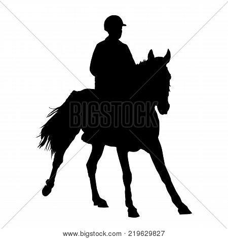 The jockey on a horse. Vector illustration.