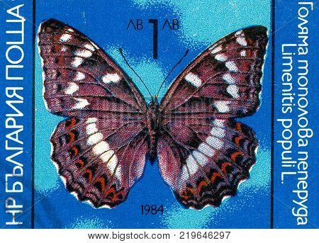 Ukraine - circa 2017: A postage stamp printed in Bulgaria shows drawing Butterfly Poplar Admiral Limenitis populi. Series: Butterflies. Circa 1984.