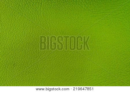 Texture of artificial leather. Background or backdrop of green leatherette.