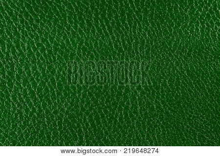 Texture of artificial leather. Background or backdrop of dark green leatherette. Deep embossing.