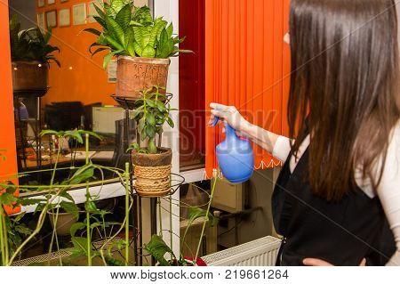 Image of beautiful woman sprinkling houseplants with blue sprinkler