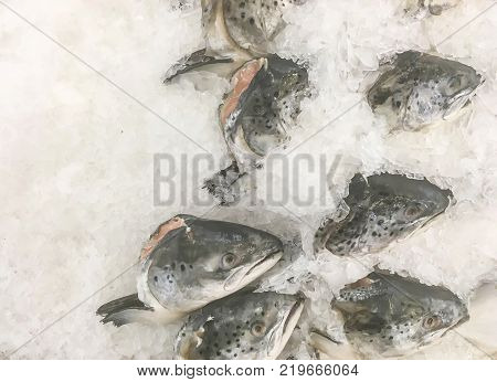 Closeup pile of raw freeze head of dead fish for cook in tray with ice textured background with copy space
