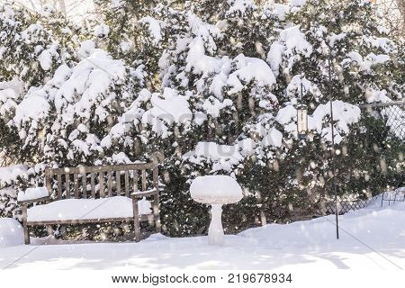 Bench bird feeder and bird bath covered in snow under blowing snowstorm sunlight filtering through green bush. Winter weather concept