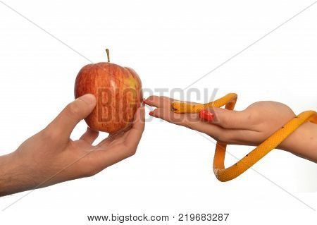 Metaphorical image of the symbolism of Adam and Eve 0016