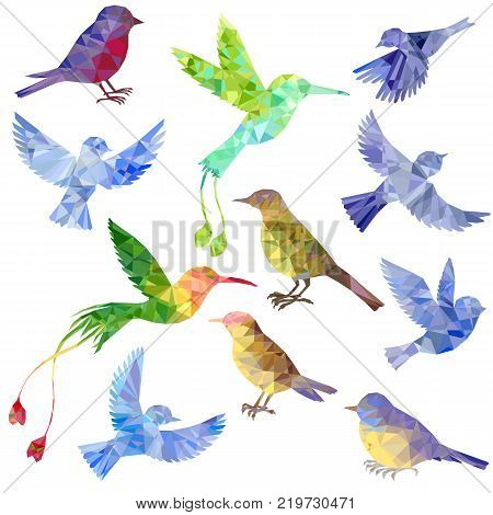 vector set of polygonal birds silhouettes, triangulation of songbirds, isolated vector elements