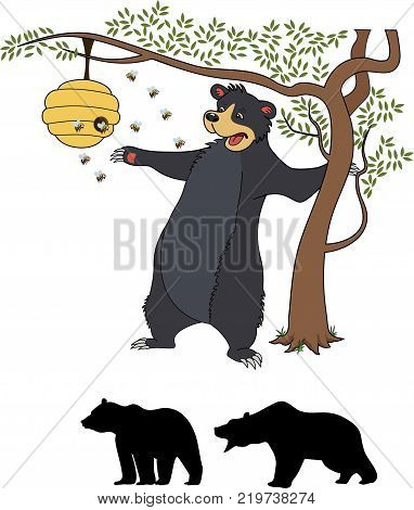 Cute cartoon bear cub with honey and bees. The vector illustration isolated on white background
