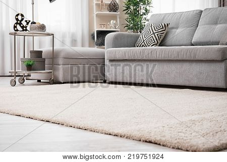 Modern living room interior with cozy sofa and soft carpet