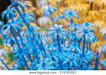 spongewood made artificial colored flowers handicrafts on display in Handicraft Fair in Kolkata - the biggest handicrafts fair in Asia.