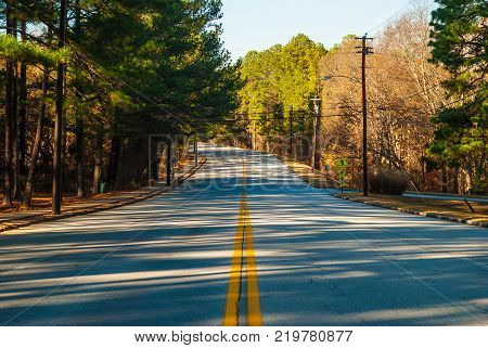 Robert E Lee Boulevard with long shadows of trees in the Stone Mountain Park in sunny autumn day Georgia USA poster