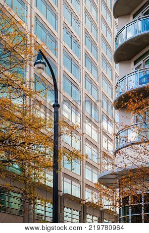 A streetlight on the background of oak trees and skyscrapers in autumn day Atlanta USA