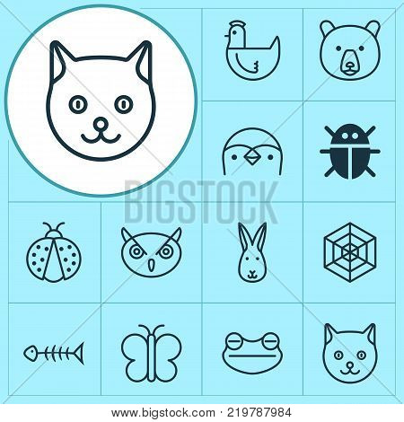 Animal icons set with night fowl, grizzly, toad and other moth elements. Isolated vector illustration animal icons.