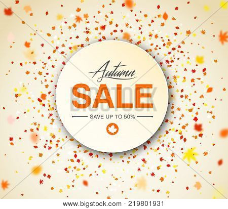 Autumn season sale banner. Concept autumn advertising with falling fall leaves. Modern design poster with lettering and colorful foliage of yellow, orange and red color
