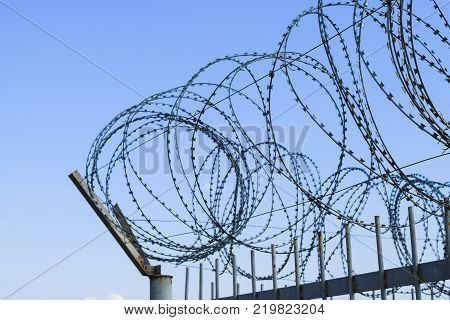 Barbed wire on the fence. Protective fencing specially protected object of barbed wire. Stamped barbed wire.